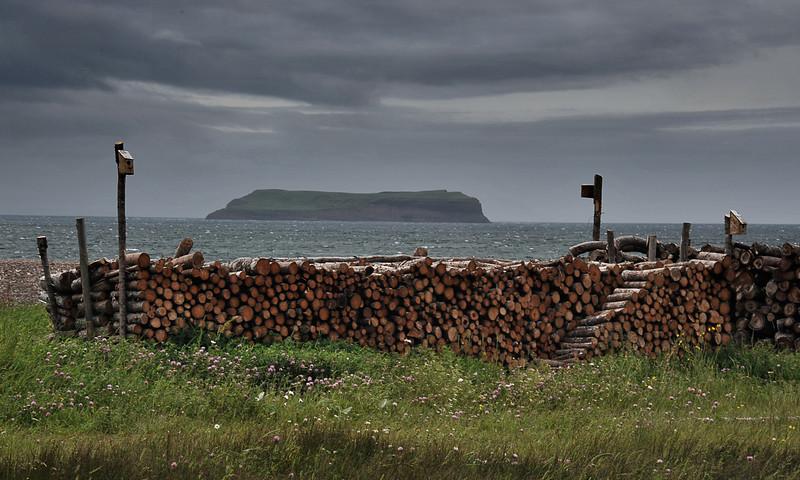 Three Rock Cove, Newfoundland, July 2010.