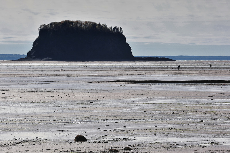 Low Tide, Bay of Fundy