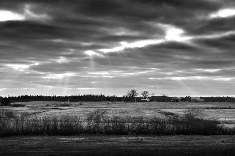 Near Shubenacadie, November 2009