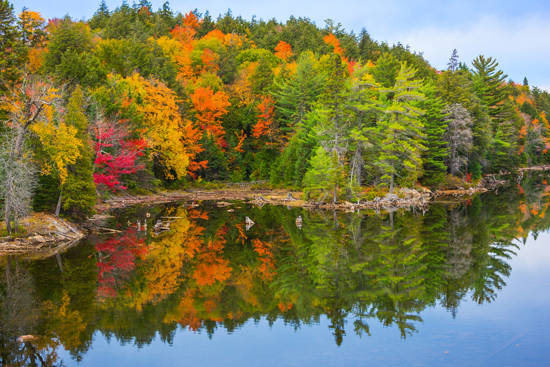 Along The River Of Color And Inlets - Algonquin Provincial Park, Nipissing, South Part, Ontario, Canada