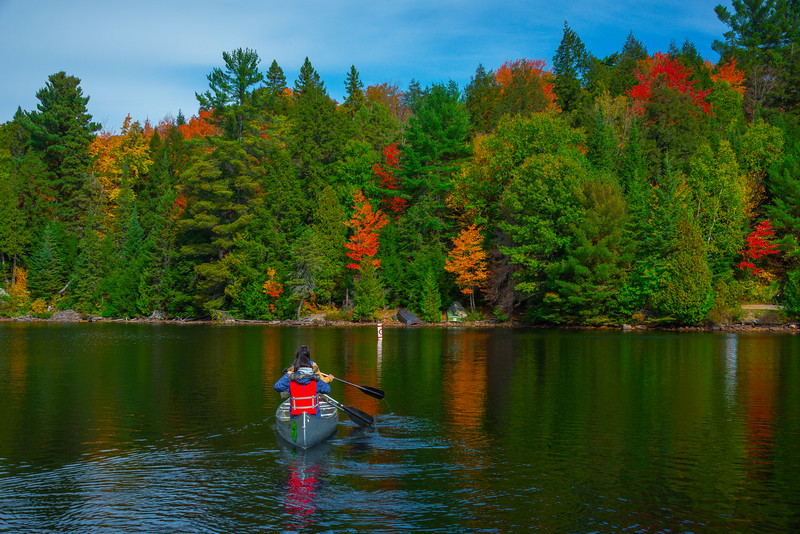 Getting A Closer Look At The Colors - Algonquin Provincial Park, Nipissing, South Part, Ontario, Canada