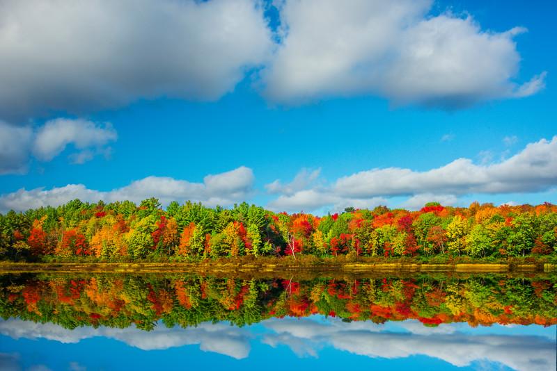 Still Reflections Alongside Road Pond