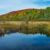 Unamed Pond Outside Huntsville - Algonquin Provincial Park, Nipissing, South Part, Ontario, Canada