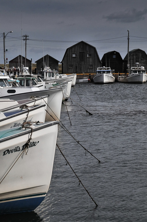 Malpeque harbour, PEI