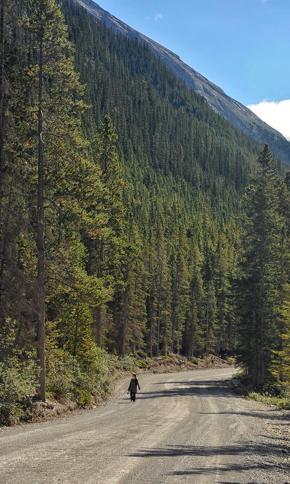 Spray Valley Provincial Park, September 2012