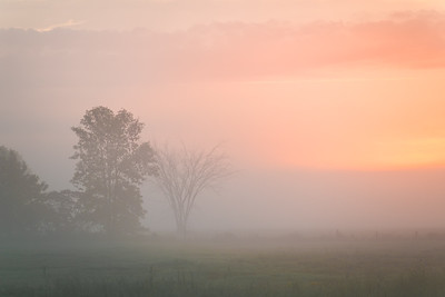 Foggy morning sunrise in Rigaud