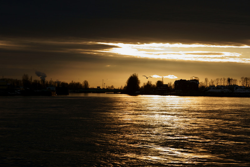 Fraser River sunset.