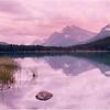 Canadian Rockies. Bow Lake. July, 1986.