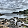 Galiano Island shore at low tide.