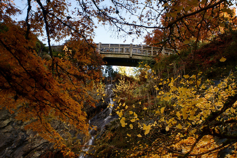 Fall colours and foot bridge