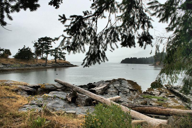 Rainy bay. Galiano Island.