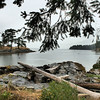 Rainy bay. Galiano Island.