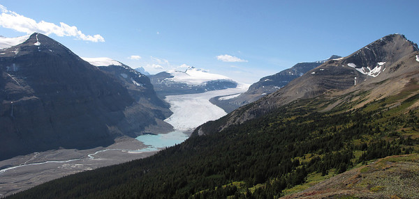 Saskatchewan Glacier and the Columbia Icefield from the Parker Ridge Trail. The waters from this arm of the Columbia Icefield drain into Hudson's Bay and eventually the Atlantic Ocean.