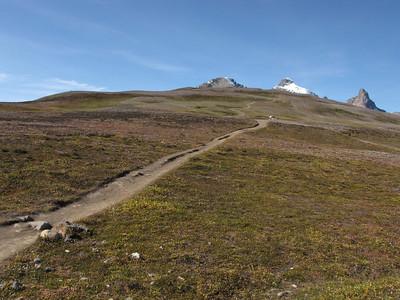 Parker Ridge alpine moor.