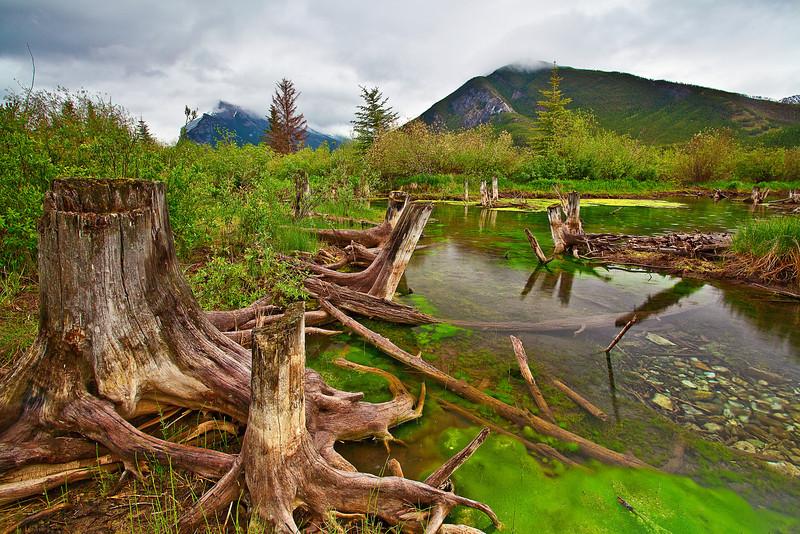 Canadian rockies, Banff National Park, Vermilion Lake, Landscape,加拿大, 班夫国家公园 风景