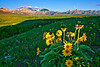 Canadian Rockies, Waterton Lake National Park, Landscape,  加拿大, 洛矶山脉, 沃特顿国家公园, 风景