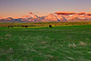 Canadian Rockies, Farmland, Sunrise.  Landscape, Reflection,  加拿大, 洛矶山脉, 沃特顿国家公园, 风景