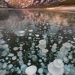 Spray Lake Methane Bubble_Early Light