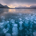 Methane Bubbles_Abraham Lake
