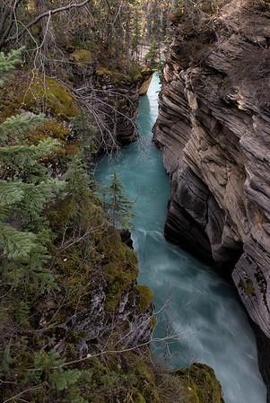 Canyon at Athabasca Falls