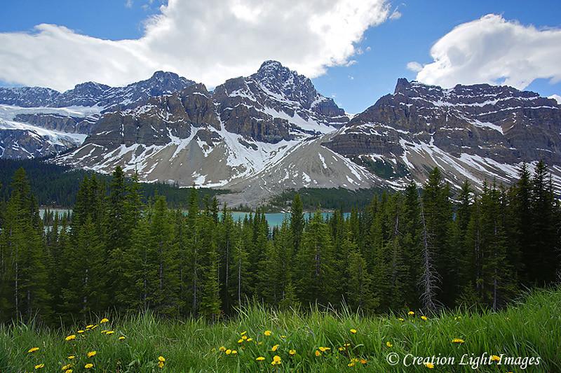 Banff Vista
