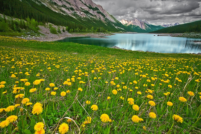 Canadian Rockies, Jasper National Park, Medicine Lake, Landscape, 加拿大 贾斯珀国家公园 风景