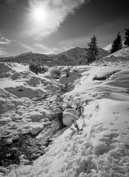 2015-8-8 | Castle Hill Snow
