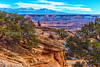 12.  The Approach To Mesa Arch