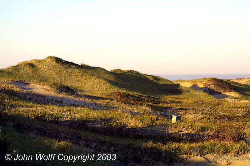 <b> Grassy dune near visitors center </b>