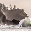 19  G Cape Disappointment Waves