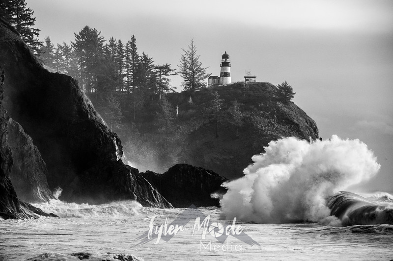 88  Cape Disappointment Waves BW
