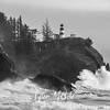 78  Cape Disappointment Waves BW