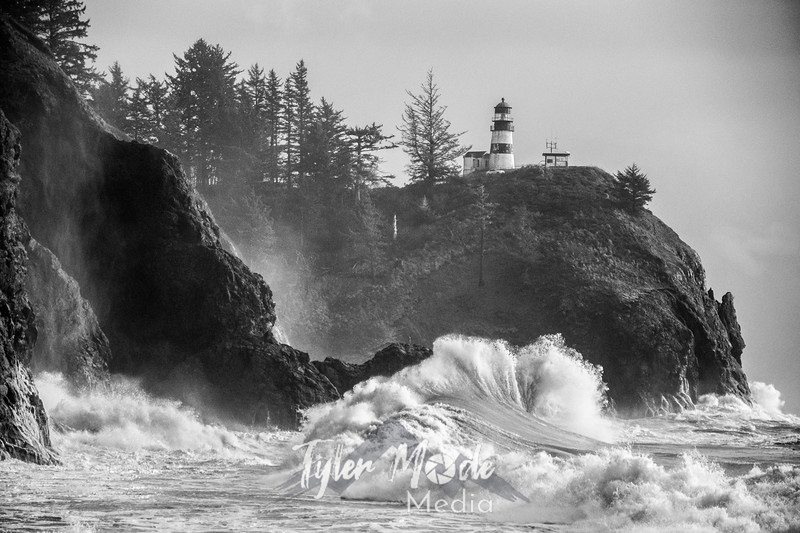 76  Cape Disappointment Waves BW