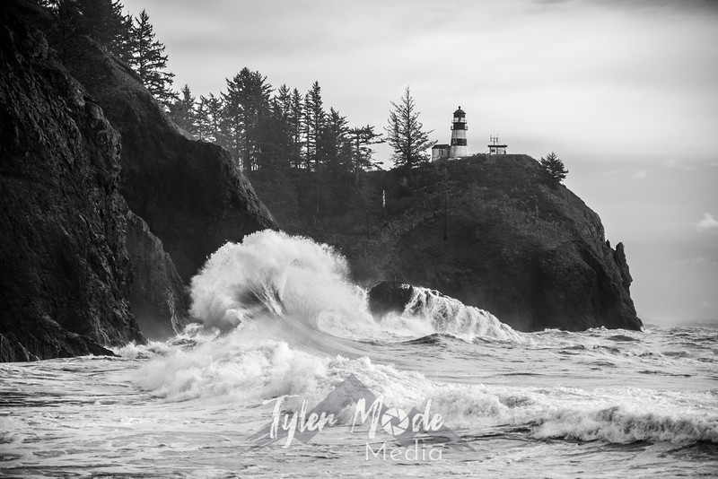 100  Cape Disappointment Waves BW