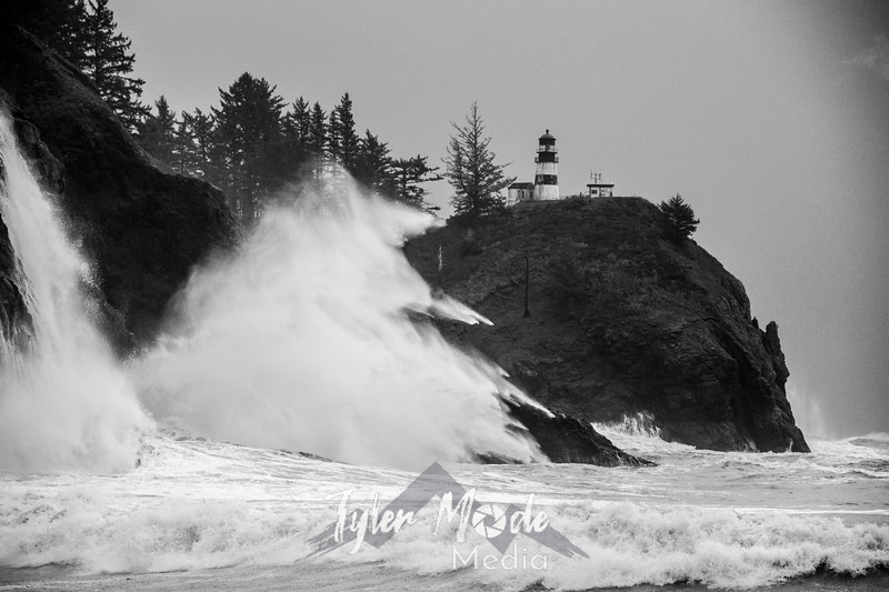50  Cape Disappointment Waves BW