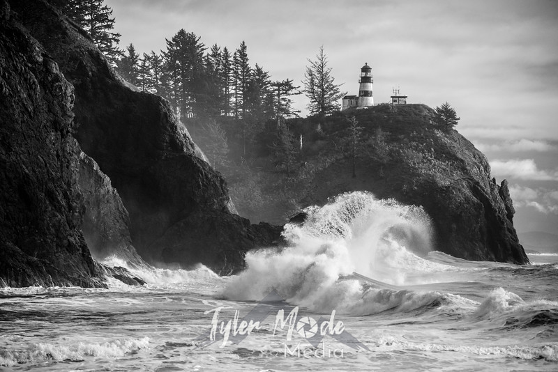 110  Cape Disappointment Waves BW