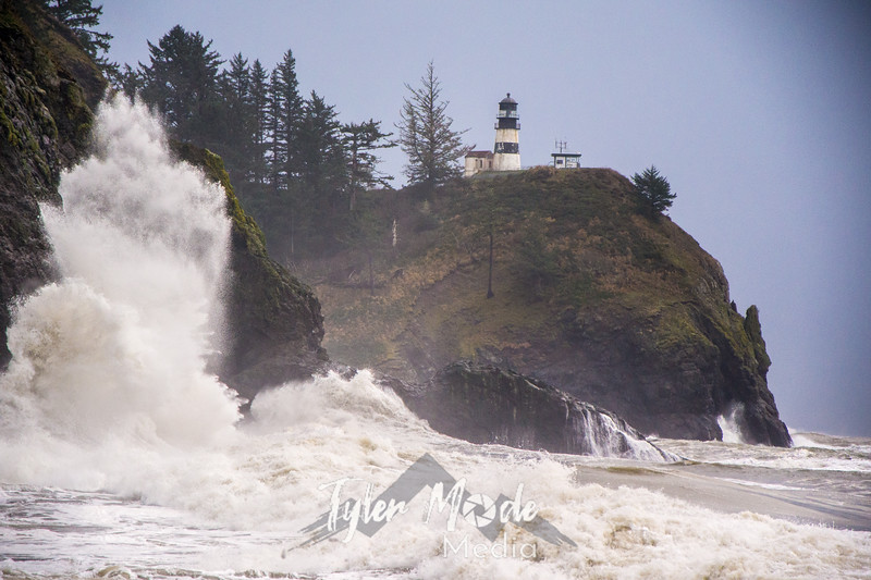6  Cape Disappointment Waves BW