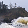 73  Cape Disappointment Waves