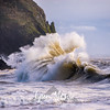 96  Cape Disappointment Waves