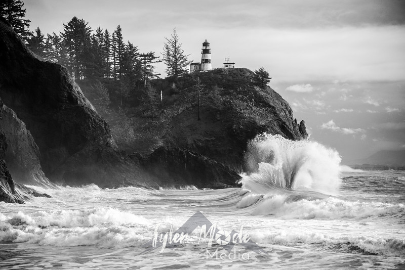 106  Cape Disappointment Waves Vase BW
