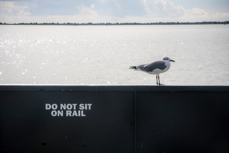 Do Not Sit On Rail