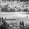 84  G Meadow Close BW