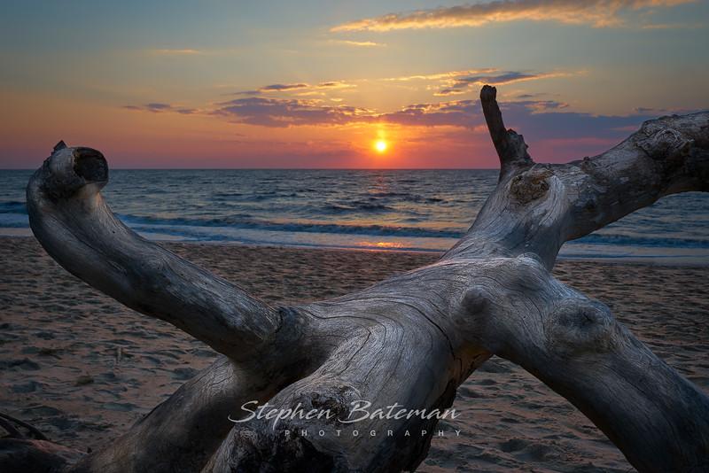 Higbee Beach, Cape May, Driftwood sunset