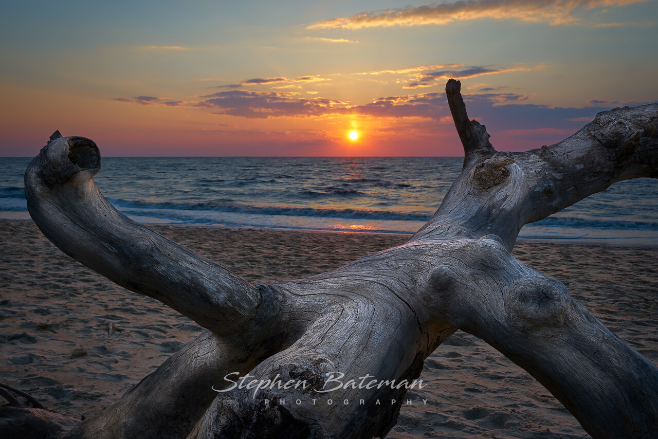 Higbee Beach, Cape May, Driftwood sunset