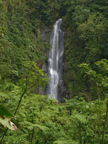 Tralfalgar Falls, Dominica