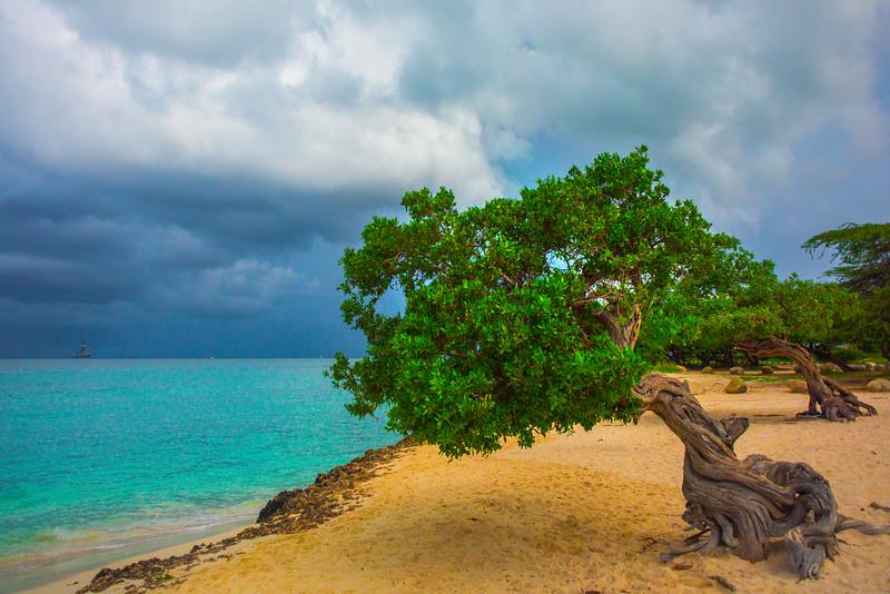 Storms Moving Over Aruba - Aruba, Caribbean Islands