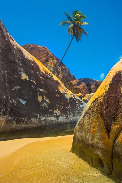 Criss Crossing Rocks And Palm Tree - The Baths, Virgin Gorda, British Virgin Islands, Caribbean