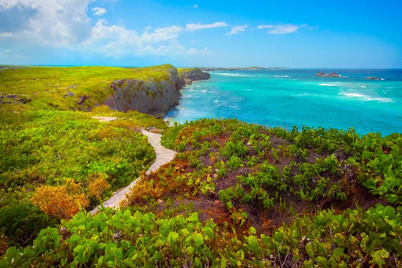 The Vibrant Coastal Foliage On Middle Caicos - Mudjin Harbor, Middle Caicos, Turks & Caicos, Caribbean
