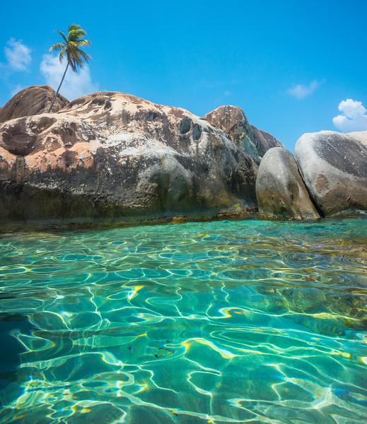 Palm Tree Over The Blue Water - The Baths, Virgin Gorda, British Virgin Islands, Caribbean