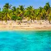 Costa Maya Shoreline Palm Beach Trees  - Caribbean Sea, Quintana Roo, Mexico